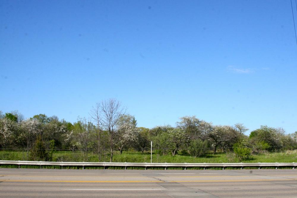 5300 Midland Road