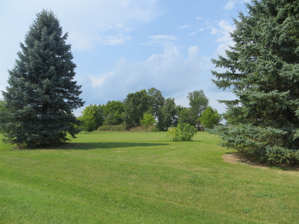Commercial Vacant Land for Sale in Pinckney