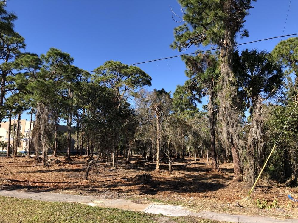 8404 Louisiana St. - photo 4 of 35