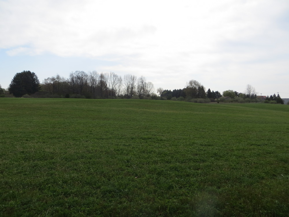 Vacant Land for Sale in Chelsea