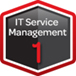 IT Service Management Expert 1
