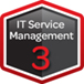 IT Service Management Expert 3