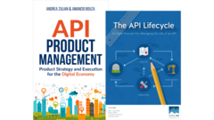 API Product Management and Life Cycle