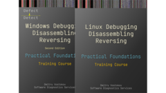 Practical Foundations of Debugging, Disassembling, Reversing