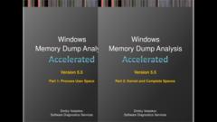 Accelerated Windows Memory Dump Analysis