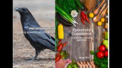 Episerver Commerce development books