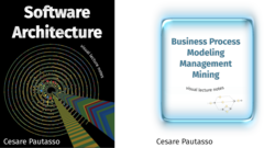 Software Architecture and Business Process Management