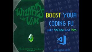 Wizards Use Vim Bundle