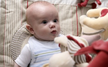 Baby development: Your 7 month old