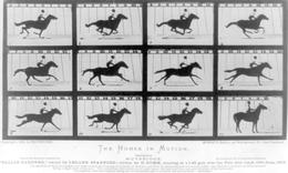 20150909162751-eadwaeard_muybridge_the_horses_in_motion1333247182803.jpg