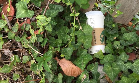 20150922171000-starbucks-cup2.jpg