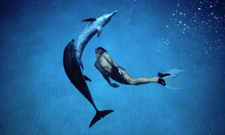 20160224171832-dolphin-boy-007.jpg