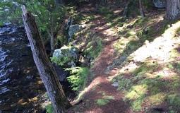 20160809010141-path-by-the-lake.jpg