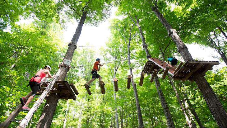 Rent a charter bus to ziplining and treetop trekking near Toronto.