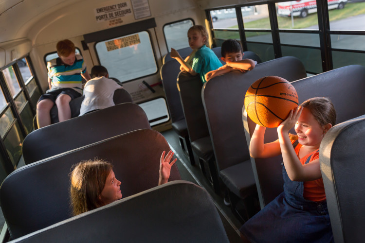 School Bus Rentals for Educational Day Trips