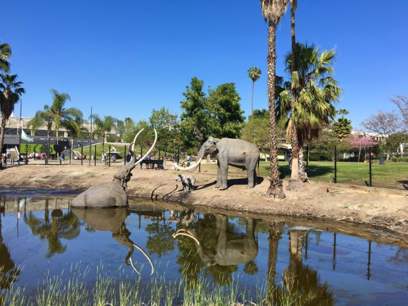 10. Parking your bus at La Brea Tar Pits and Museum