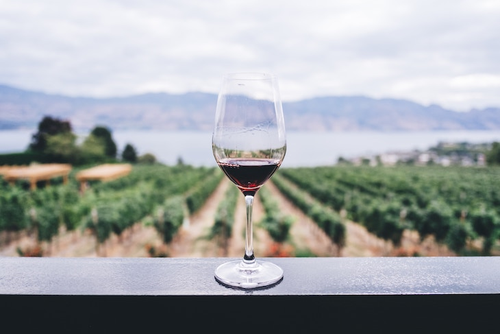 Rent a bus to Diamond Hill Vineyards.