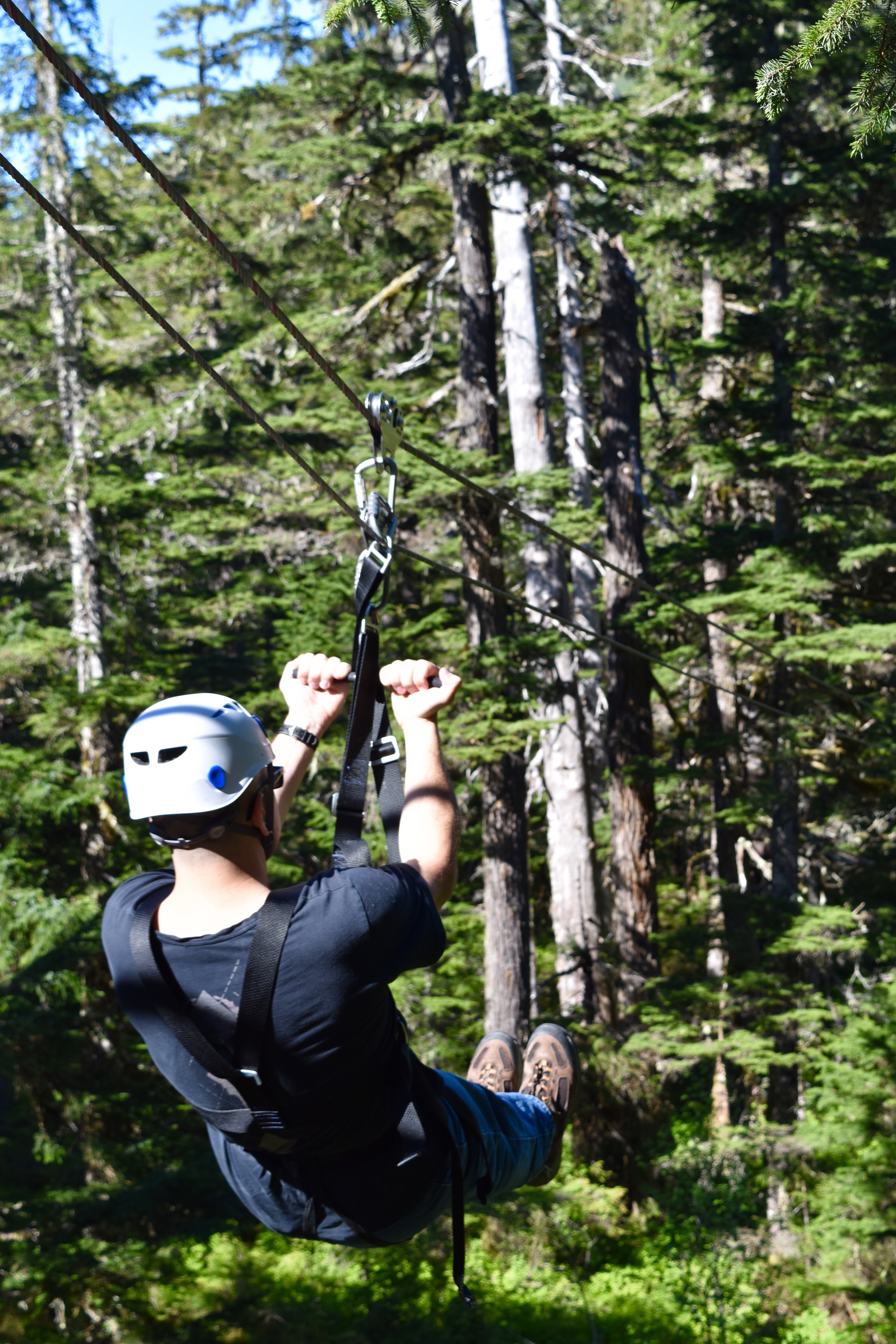 Get to a ziplining adventure with a charter bus rental