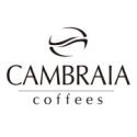 Cambraia