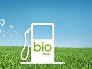 El biodiésel es la solución energética que México deja de lado