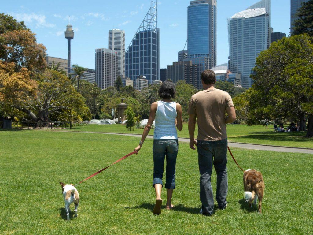 paseo por el parque
