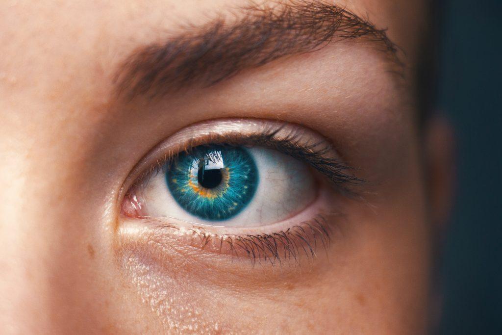retina del ojo humano no recibe sangre