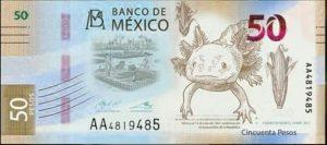 Banxico confirma que el ajolote será parte de la nueva imagen del billete de 50 pesos