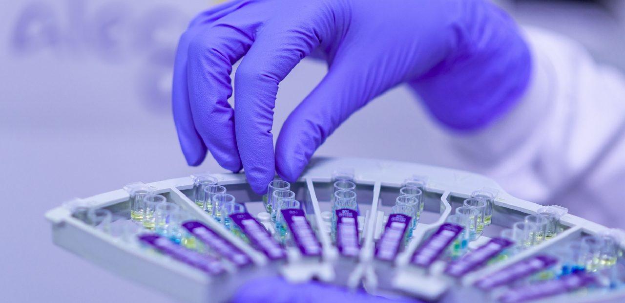 Examen y análisis médico