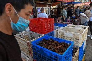 Mercados de alimentos frescos de Wuhan, la ciudad china donde inició el coronavirus, luchan para sobrevivir