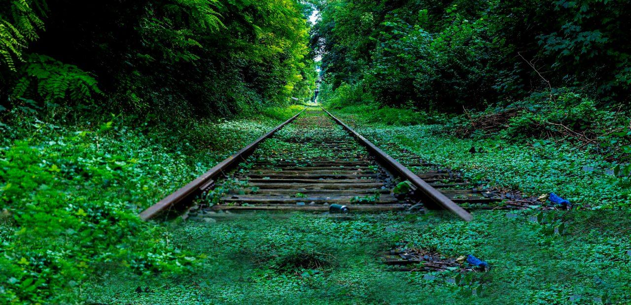 CNDH pide detener el proyecto turístico del Tren Maya para proteger a los indígenas del coronvirus | Business Insider México