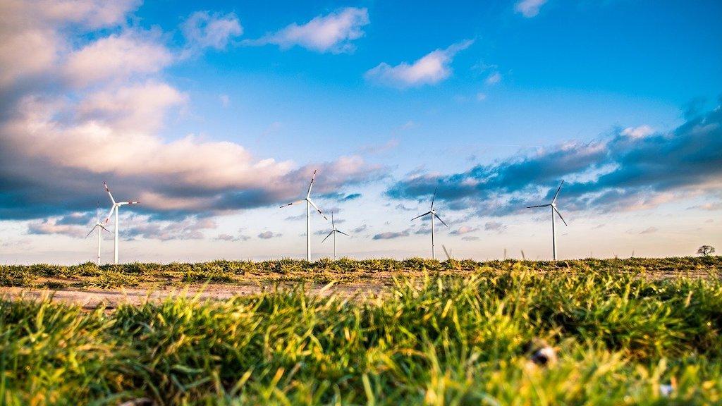 Juez suspende temporalmente acuerso de Cenace que frena la energía renovable