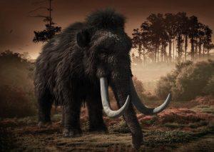El INAH halla restos de 60 mamuts donde se construye el aeropuerto de Santa Lucía