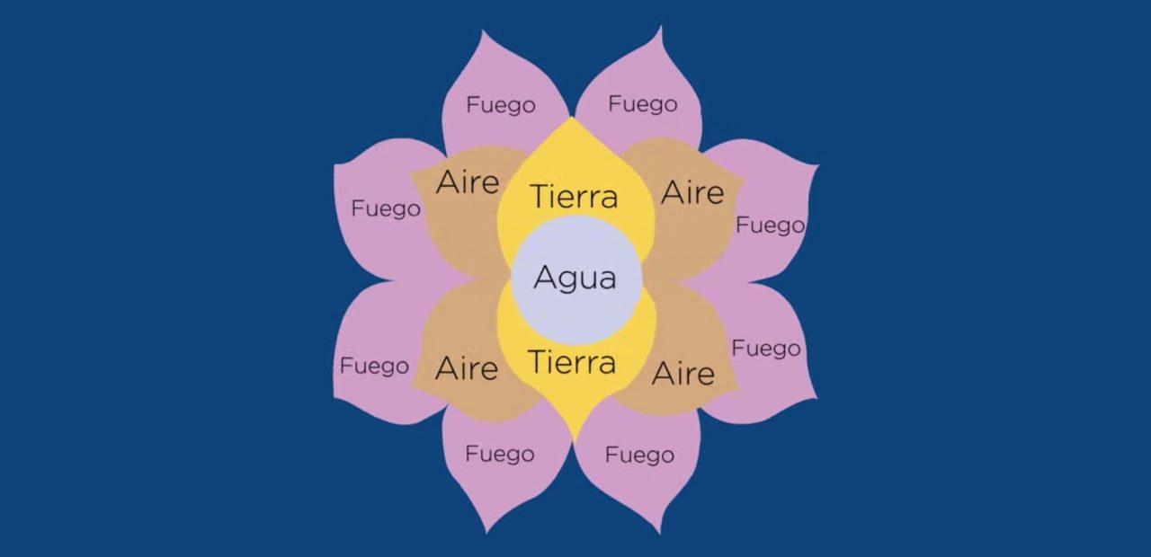 flor de la abundancia como funciona | Business Insider México
