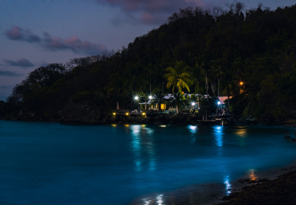 turismo paises covid | Business Insider México