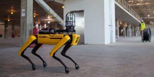 El perro robot de Boston Dynamics pronto vendrá con un brazo y 'algún día' estará disponible para usos domésticos