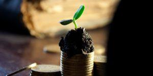 Haz un presupuesto y mejora tu economía familiar con estos sencillos pasos