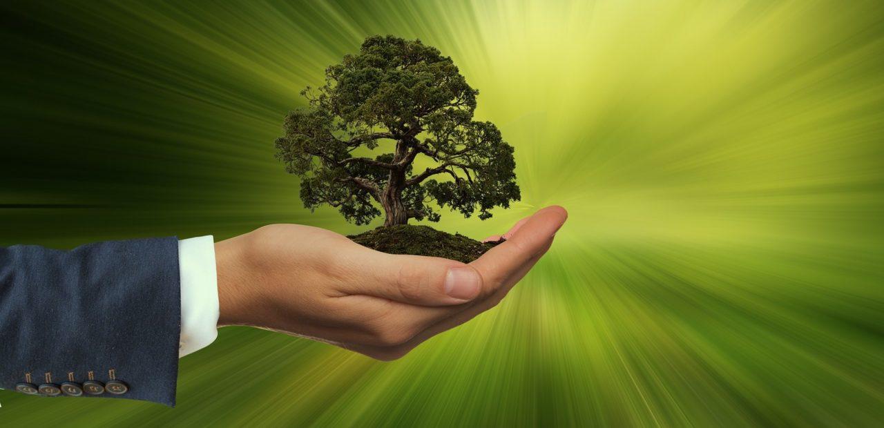 empresas sostenibilidad medio ambiente cambio climático