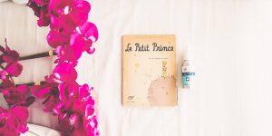 «El Principito» de Antoine de Saint-Exupéry y otros 11 libros infantiles que influenciaron a personas altamente exitosas