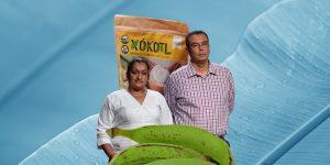 Xókotl: una harina hecha de plátano que promete llevar un trato justo a los productores de Michoacán