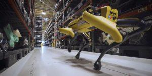 Inteligencia artificial, robots y algoritmos: por qué estas innovaciones no quitarán el trabajo a los humanos en los próximos años