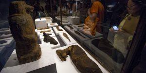 Científicos desenvolvieron digitalmente a momias de animales para ver cómo los antiguos egipcios mataban en rituales a los animales