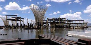 Los terrenos del NAICM entre maleza e inundaciones, esperan convertirse en un parque ecológico