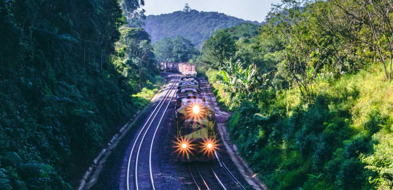 tren maya tramo 5 | Business Insider México