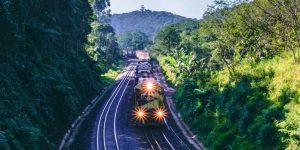 La licitación para el Tramo 5 del Tren Maya queda desierta —el gobierno federal baraja quedarse con la obra, dice AMLO