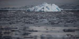 Los fósiles marinos revelan que la temperatura de la Tierra podría alcanzar un nivel nunca visto en 50 millones de años