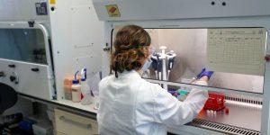 AstraZeneca y Universidad de Oxford reanudan pruebas de su vacuna para el Covid-19