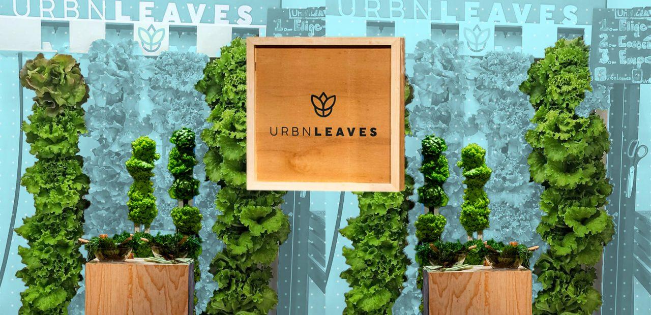 Urbn leaves | Business Insider México