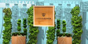 Urbn Leaves quiere impulsar la agricultura en metros cúbicos con huertos verticales