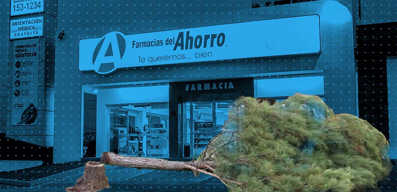 farmacias del ahorro   Business Insider México