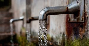 A los habitantes de una ciudad de Texas se les advirtió sobre una ameba «come cerebros» en el suministro de agua